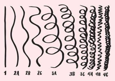 curly hair chart